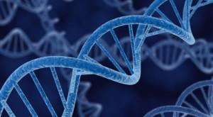 DNA-640x353